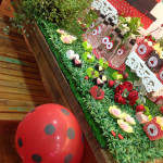 mesa&afins - Palestra: Jardim das Joaninhas, imagem 03